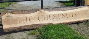 Hand Carved Name Board
